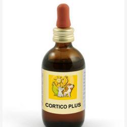 cortico_plus