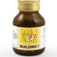 building_I_capsule